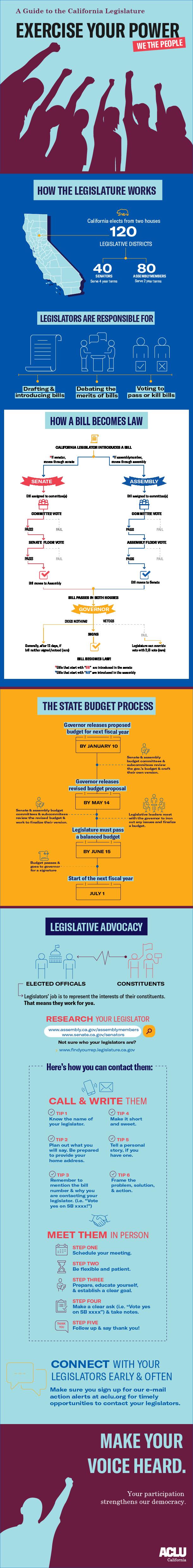 Legislative Infographic