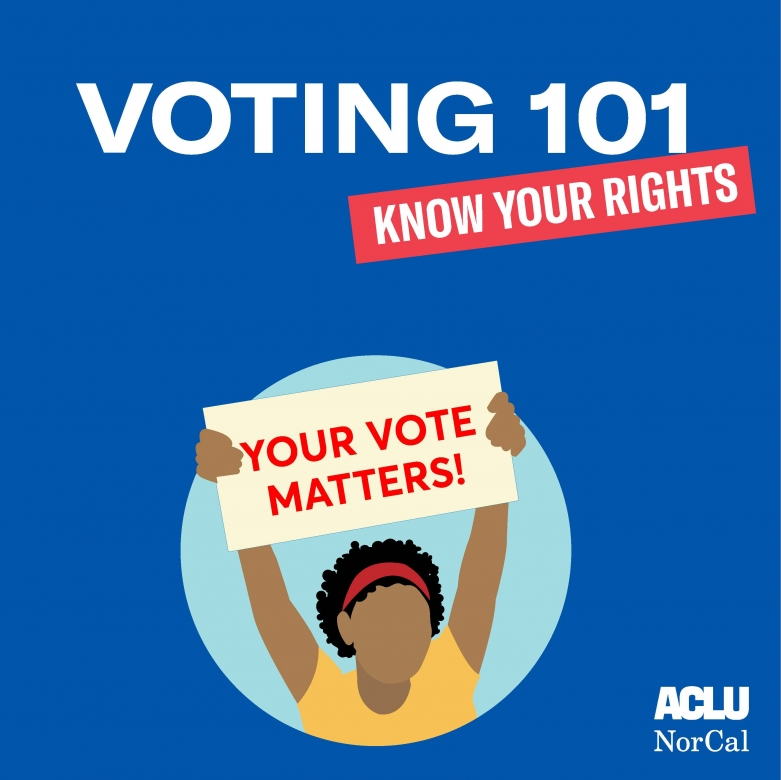 "Know Your Rights Voting 101 illustration of woman holding sign that says ""Your Vote Matters"""
