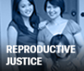 ACLU Issue: Reproductive Justice